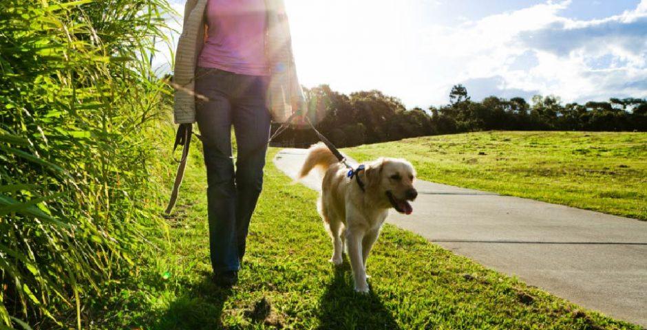 caminar como terapia
